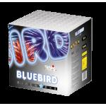 Salūts, Tropic Blue Bird